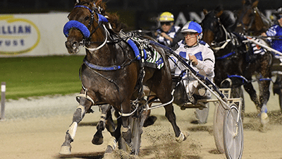 Harness Racing Thumbnail New Home Page