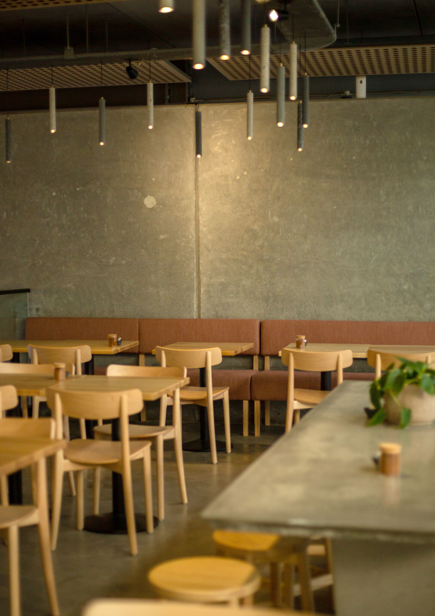 A calm and cheerful vibe at Benedict's Cafe in Eden Terrace