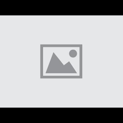 Bose HP Silver