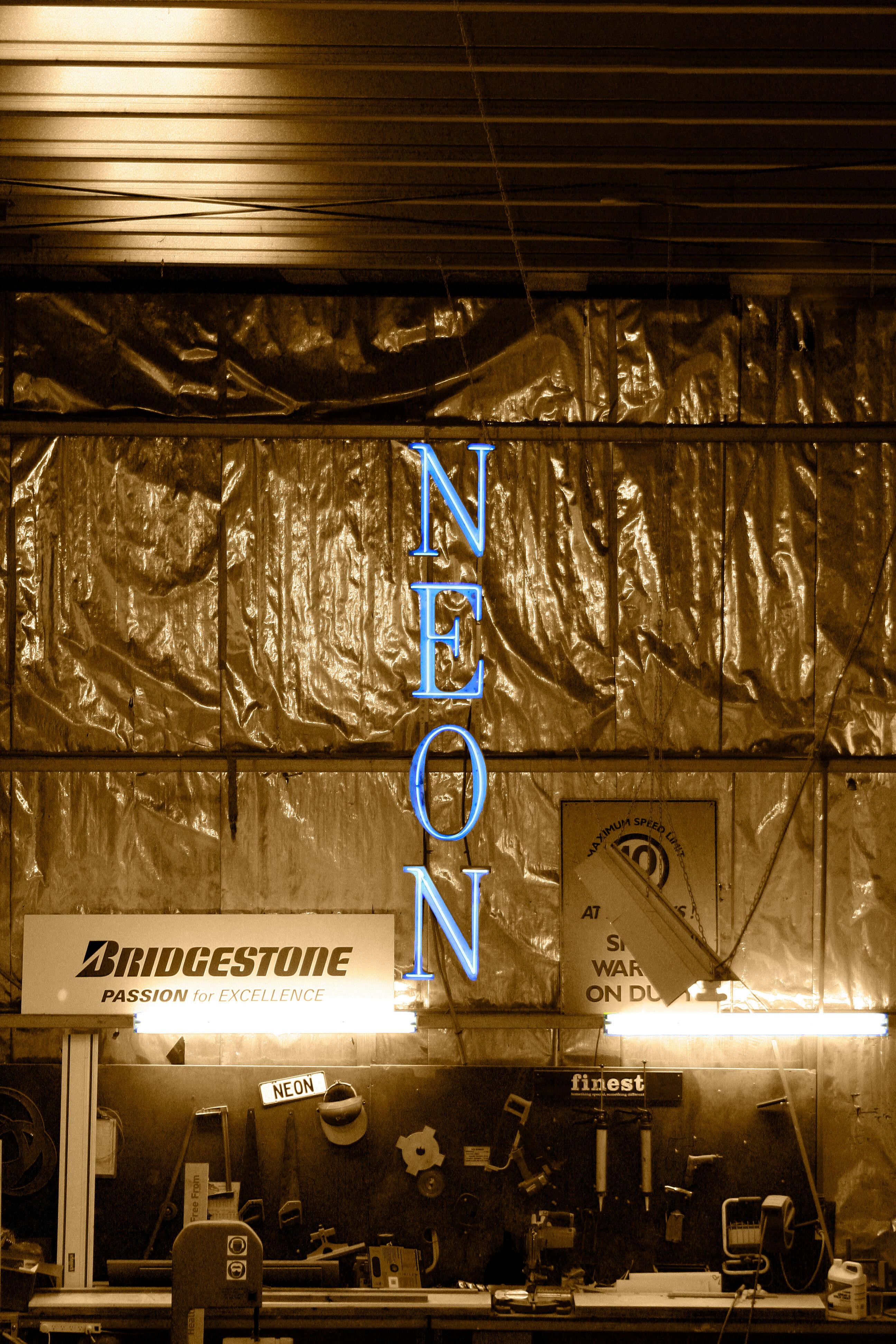 NEON Workshop Low Res