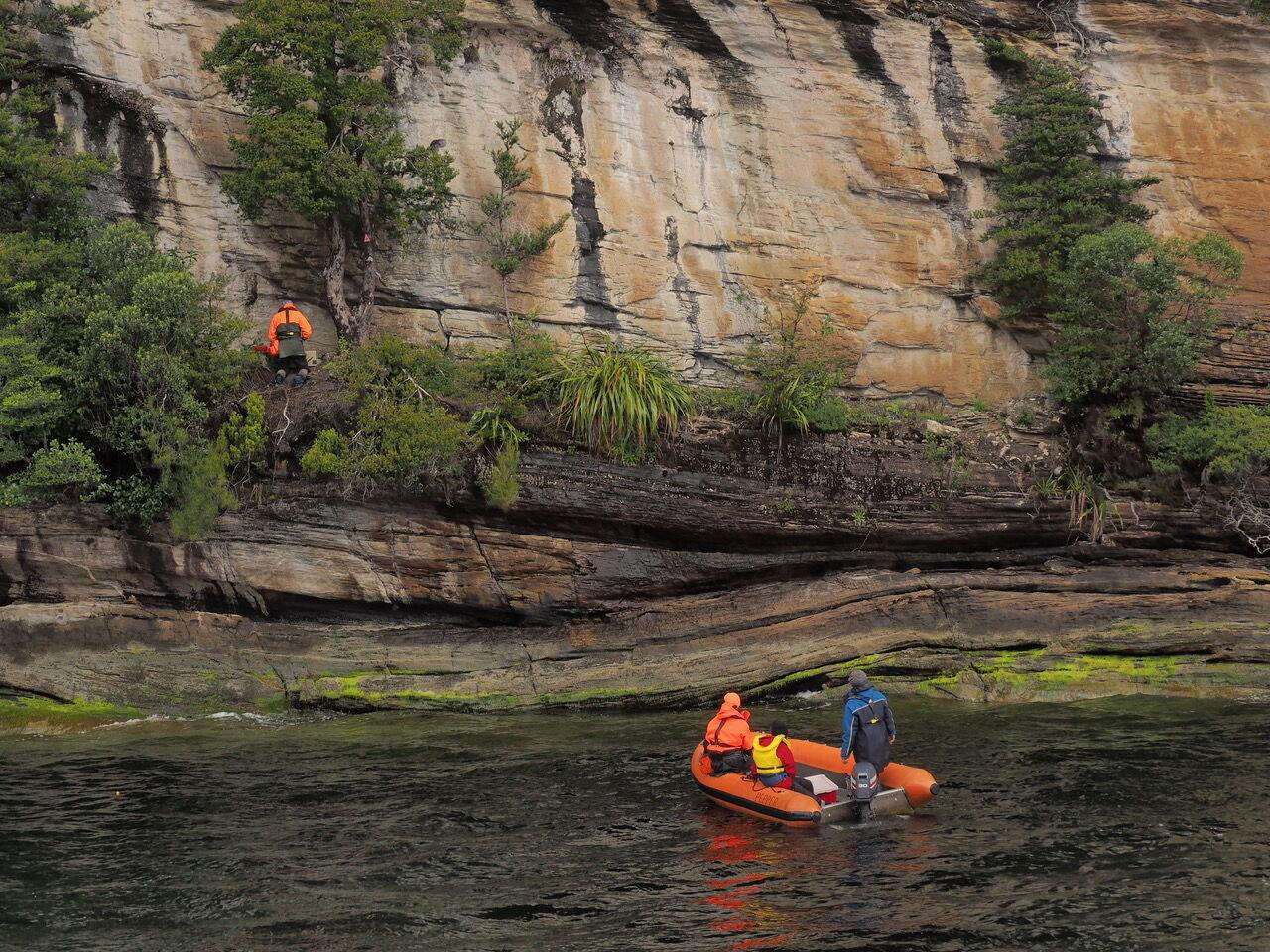 Setting Cliff Predator Traps