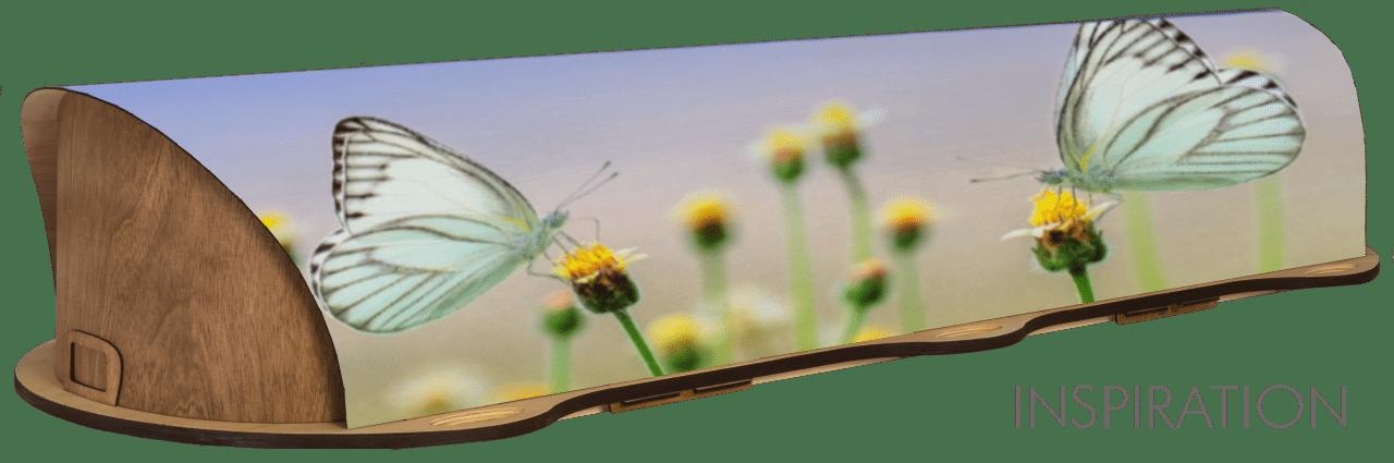 Inspiration - Butterflies
